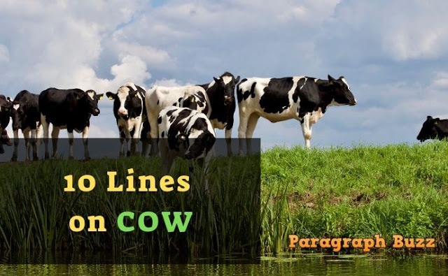 10 Lines on Cow