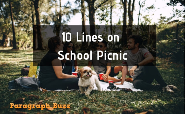 10 Lines on School Picnic