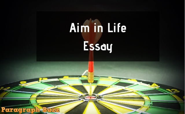 The Aim in Life Essay