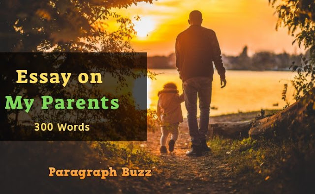 Essay on My Parents in 300 Words