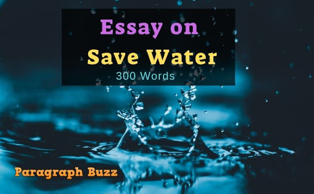 How to Save Water Essay in 300 Words