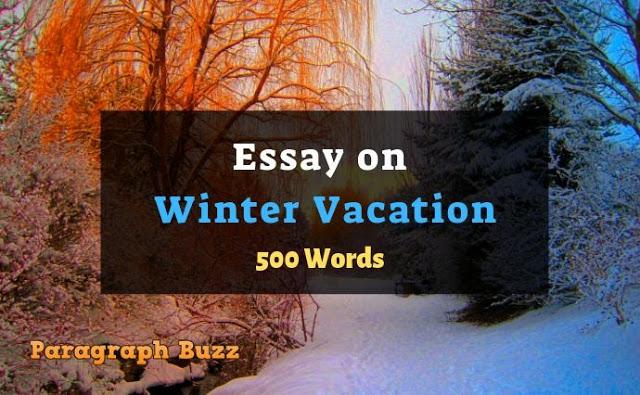Essay on Winter Vacation in 500 Words