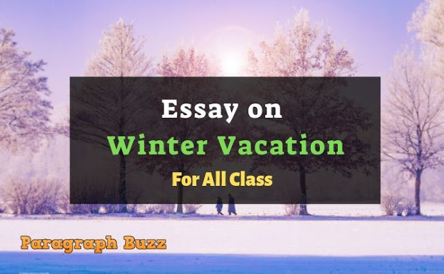 Essay on Winter Vacation