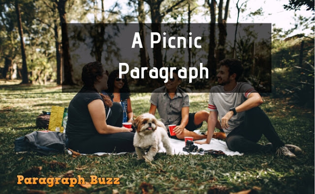 Paragraph on A Picnic