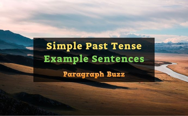Simple Past Tense Example Sentences | Affirmative, Negative, Interrogative