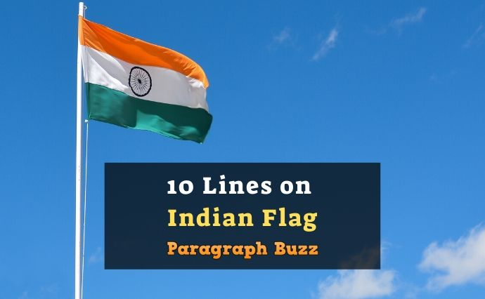 10 Lines on Indian Flag in English