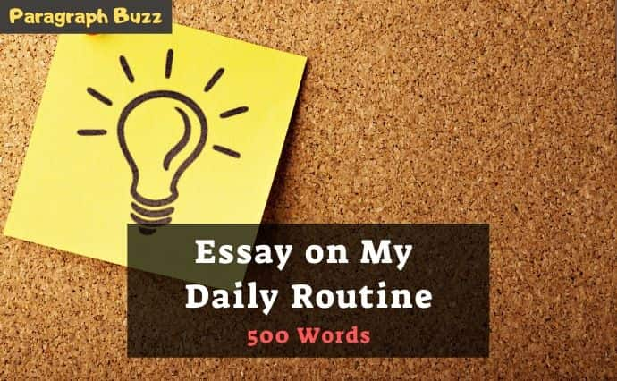 Essay on My Daily Routine in 500 Words
