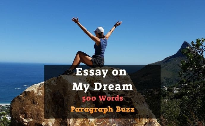 Essay on My Dream in Life (500 Words)
