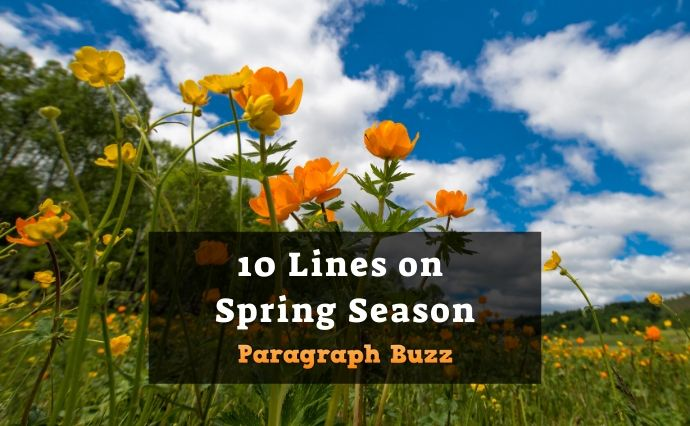 10 Lines on Spring Season in English