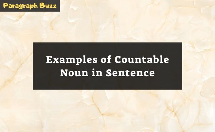 Examples of Countable Noun in Sentences