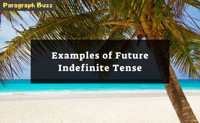 future indefinite tense examples