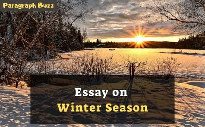 winter season essay